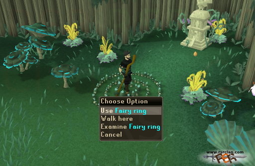 Osrs Best In Slot Ring
